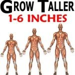 Can Your Height Affect Your Career and Success?